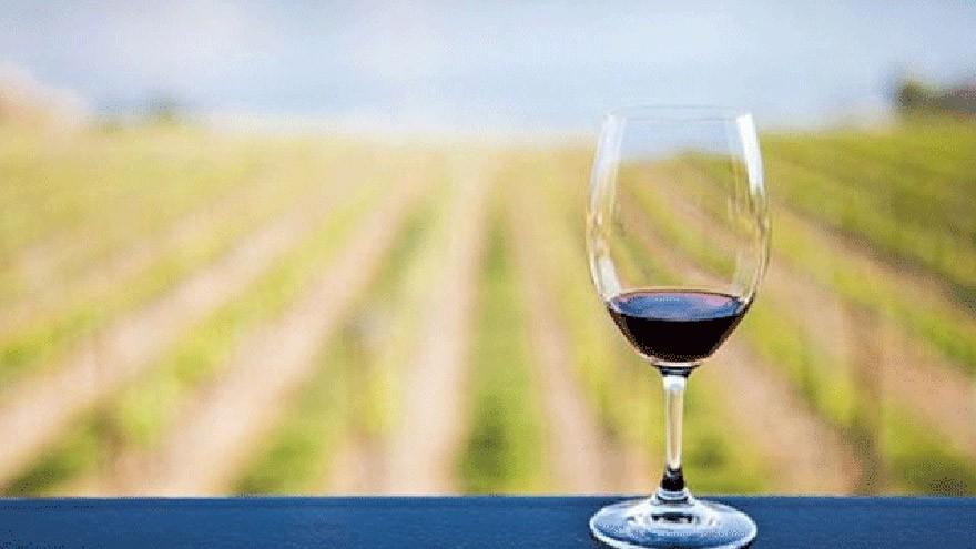 Alerta por el cambio climático: así se verá alterado el negocio del vino a nivel mundial